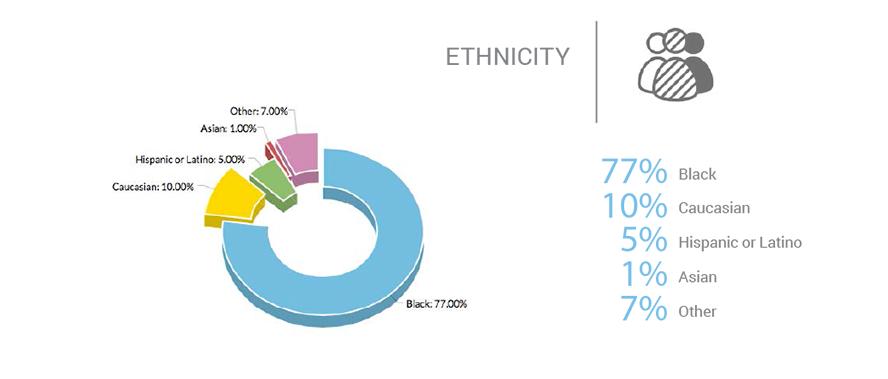 ethnicity-graph